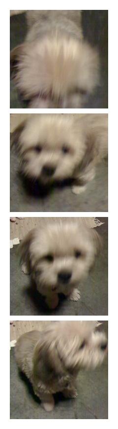 Luna is blurry