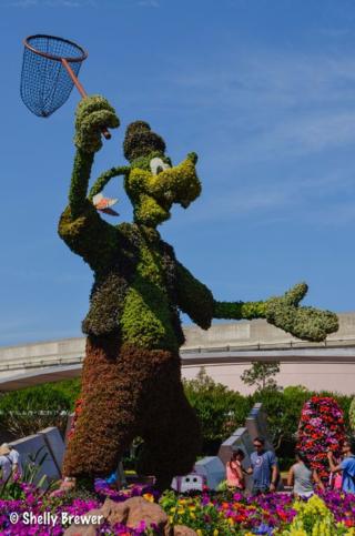 Flower & Garden Goofy