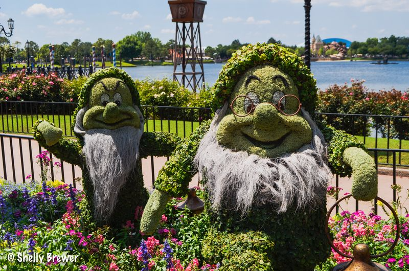 Grumpy & Doc Topiary